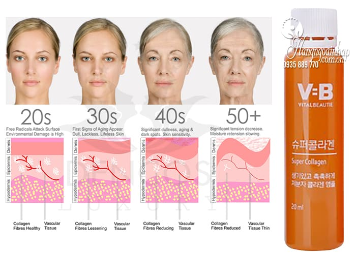 Nước uống Collagen VB Vital Beautie hộp 30 chai Hàn Quốc 3