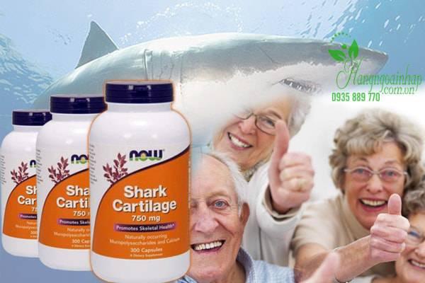 Sụn Vi Cá Mập Now Shark Cartilage Freeze Dried 750mg