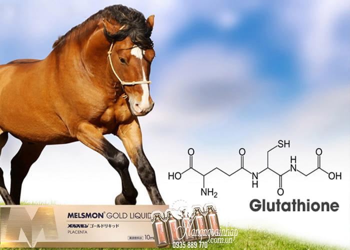 Nước uống nhau thai ngựa Melsmon Gold Liquid Nhật Bản 1